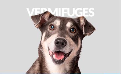 Vermifuges