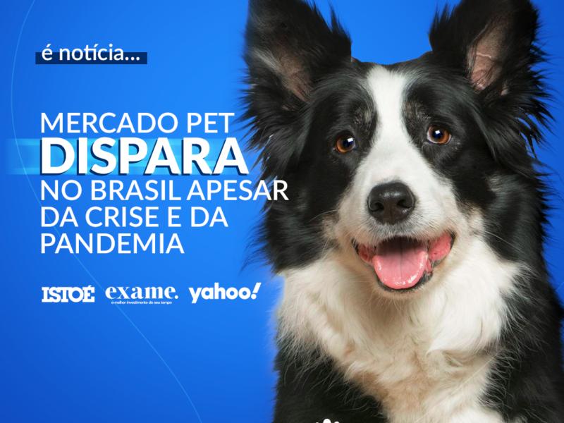 Mercado pet dispara no Brasil mesmo com a pandemia